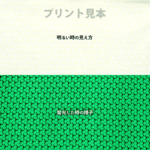 N_Green GLL300(PS2)【(高輝度グリーン発光)ルミックカラー繊維スクリーンプリント用蓄光インク】