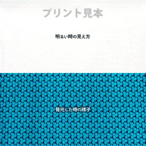 N_SkyBlue BG300【(スカイブルー発光)ルミックカラー繊維スクリーンプリント用蓄光インク】