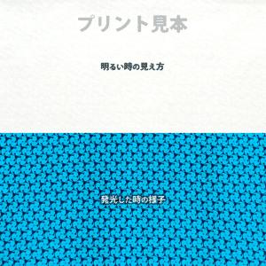 N_SkyBlue BGL300【(高輝度スカイブルー発光)ルミックカラー繊維スクリーンプリント用蓄光インク】