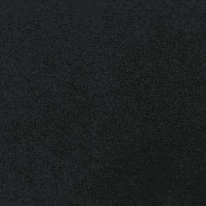 染彩【直接染料】Direct Black B 320% 1.8%染色